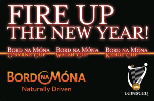 Bord Na Mona O'Byrne Cup and Walsh Cup Panels