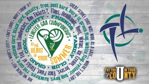 Ticket Information – Kildare v Laois