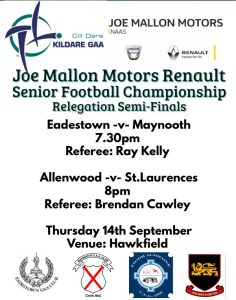 Joe Mallon Motors Renault SFC Relegation Semi-Finals