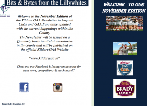 Bits & Bytes from the Lillywhites – November Newsletter