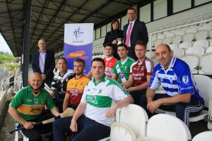 Haven Hire Junior Hurling Championship